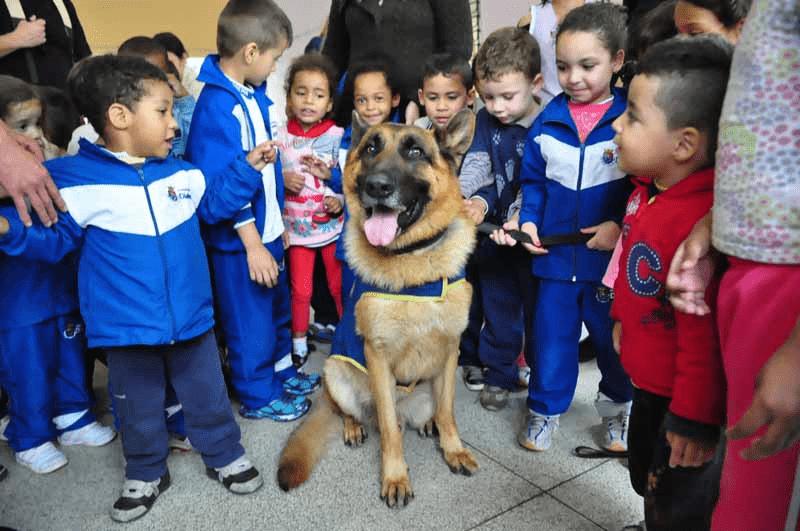 Escola EREMITA GONCALVES DA COSTA ESC MUN DE EDUC BASICA - em JARDIM DOS EUCALIPTOS, DIADEMA, SP